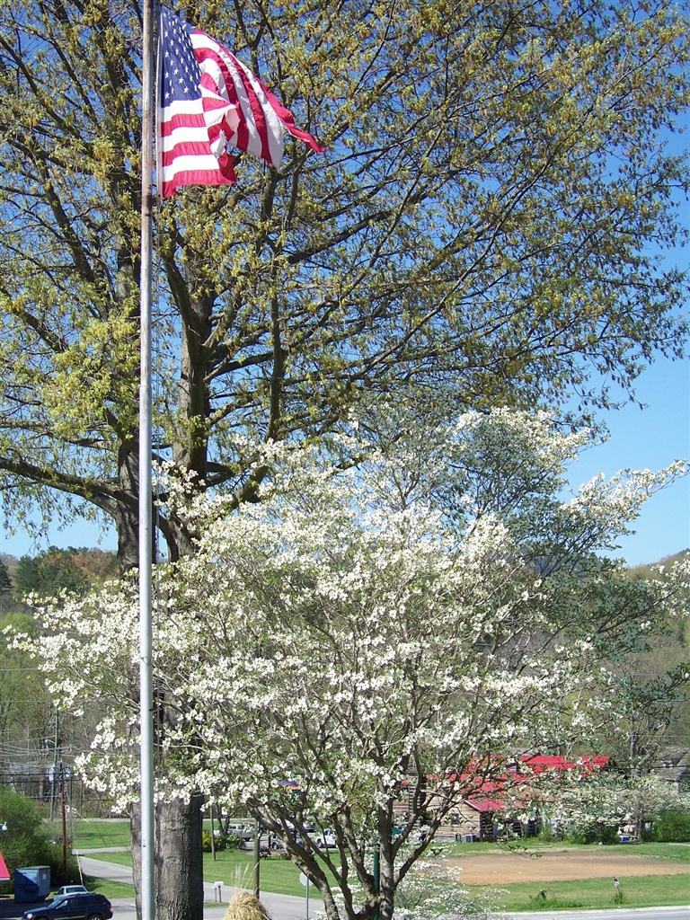 An American flag flying at the Highland Manor Inn in Townsend TN.