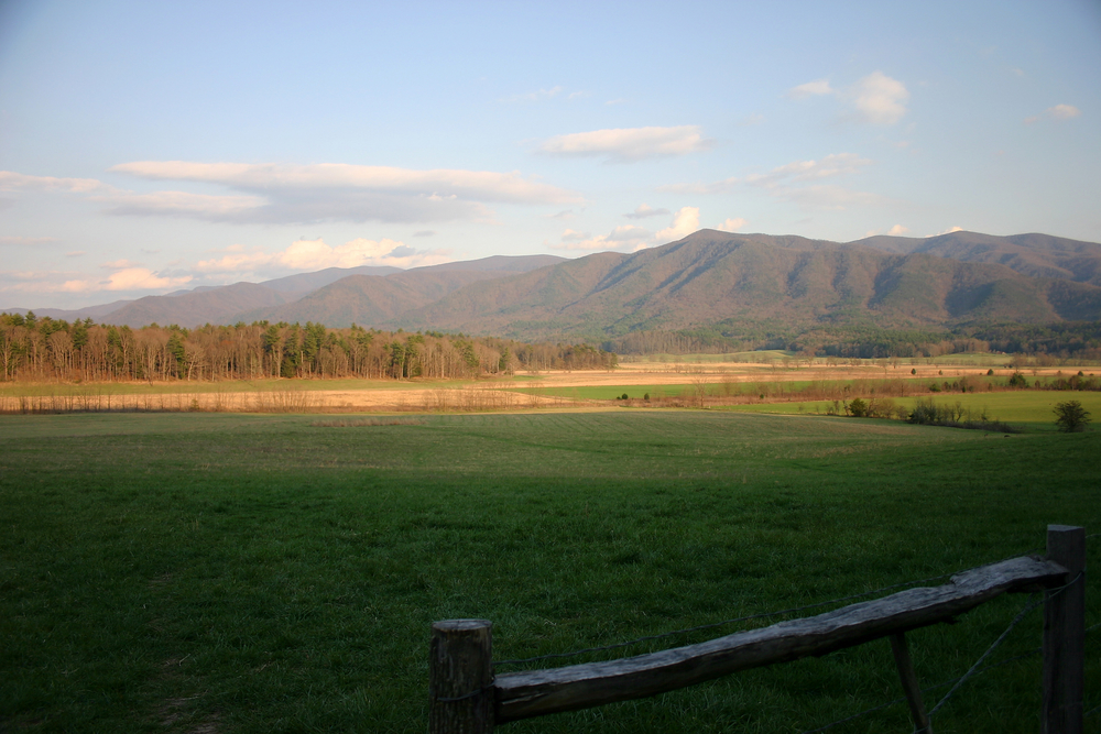 Mountain View at Cades Cove